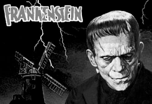 frankenstein bibliografy Learn how to cite the litchart on mary shelley's frankenstein.